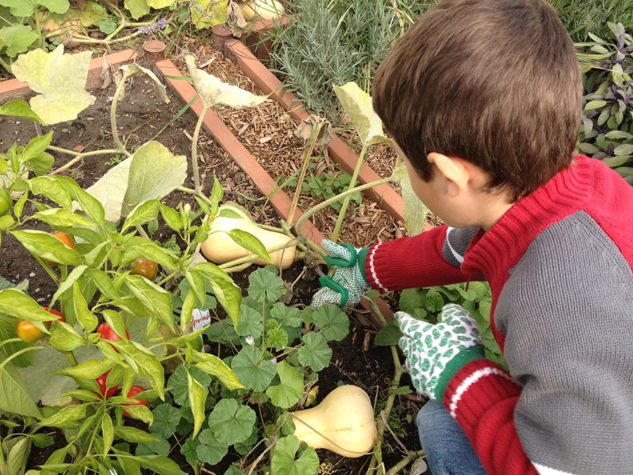 Kid playing in Gardening